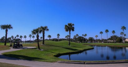 palm tree-lined golf course in Florida