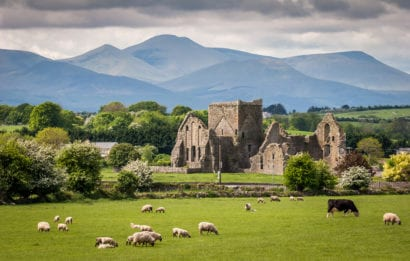 Farm animals grazing in field next to old castle with mountains in the background in Ireland