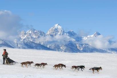 Dogs pulling sled in Alaska