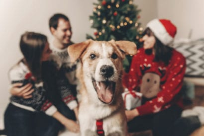 dog and family in front of Christmas tree