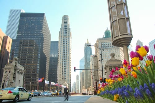 city of chicago mag mile