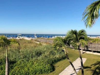 Florida Beachcomber