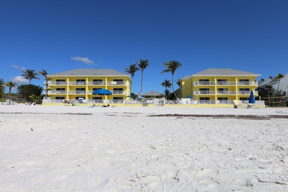 Florida Sandpiper