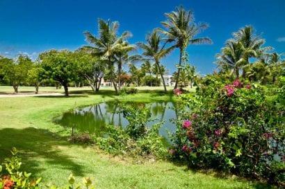golf resorts - paradisus palma real