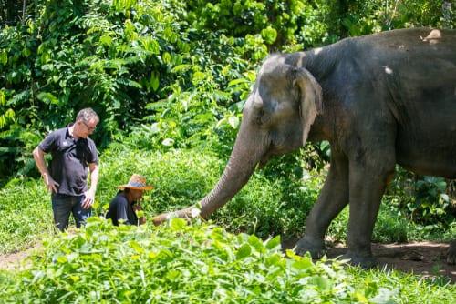Thailand Phuket 4