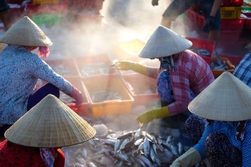 vung tau fish market