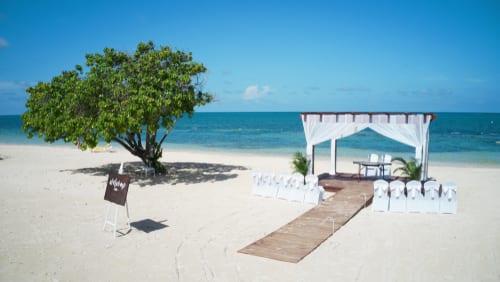 jamaica wed