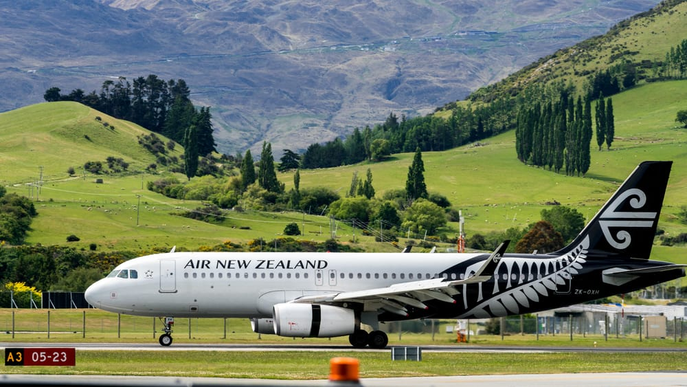 Disney Co. CEO air new zealand